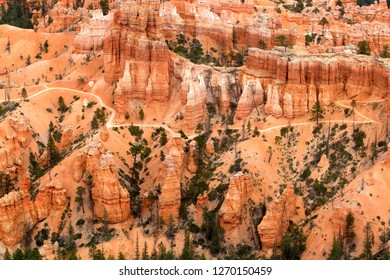 Rock formations and hoodoos, Sunset Point, Bryce Amphitheater, Bryce Canyon National Park, Utah, USA.