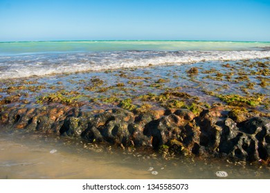 Rock formations at Pontal de Jaguaribe beach during low tide - Ilha de Itamaraca, Brazil
