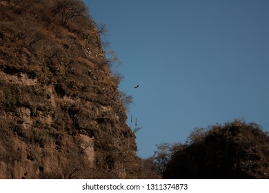 Rock formations and vegetation found within the hill of the speaker in a state of Mexico