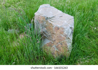 rock in the grass