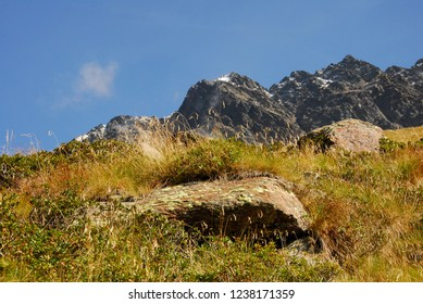 Rock in the Grass in Front of beautiful Mountains and a blue Sky