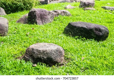 rock in grass. Natural texture background. Big stone on green lawn.