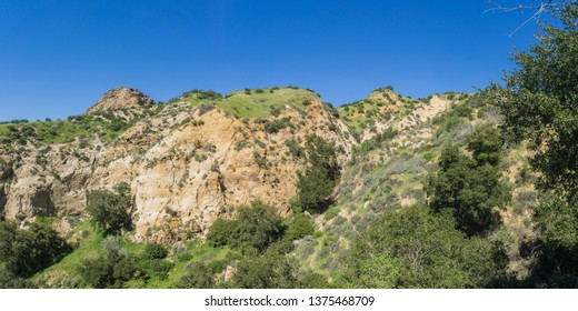 Rock hillside and cliff sloped with green and growing spring brush in California.