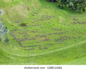 Rock letters and word in the hill, Mount Eden Vulcano, auckland, New Zealand