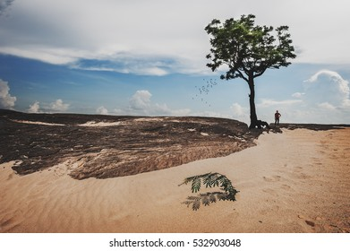 Rock on sand dune and alone big tree with one man at 3000 boke (3000 holes) near Khong river border, Ubonratchathani province