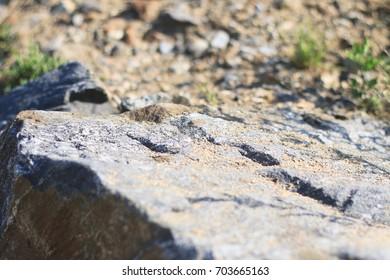 Rock on a sandy beach