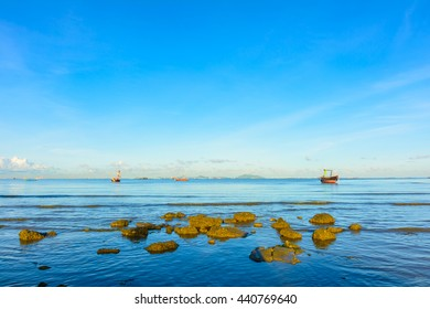 Rock on the sea in morning. Nature beach and sea background