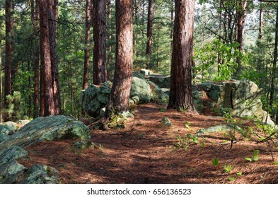 rock outcrop along woodland trail at castle mound pine forest in black river state forest of jackson county wisconsin