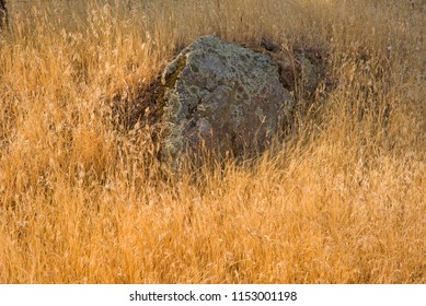 Rock outcroppings in the California foothills of the Sierra Nevada Mountains are left from the last Ice Age, accompanied by lichen and dried grass.