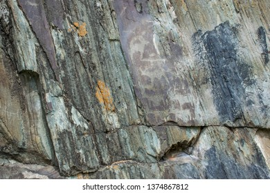 Rock petroglyphs in the tract Kalbak-Tash. Petroglyphs of different historical periods: from the Neolithic to the ancient Turkic era. Altai Mountains. Russian summer in Siberia.