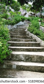 rock stair path to upper among tree and nature  - soft and select focus