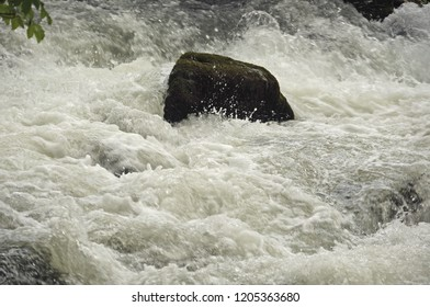 Rock surrounded by a torrent. Mountain stream.