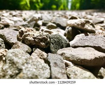 Rock trail in beautiful nature
