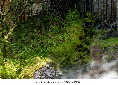Rock wall, partially covered in lush green rainforest vegetation, Chania Waterfall, Aberdares, Kenya, Africa. Mist from the falling water is swirling above the plunge pool. Dappled light. Copy space.