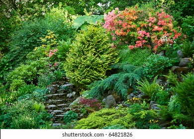 rockery with rhododendrons