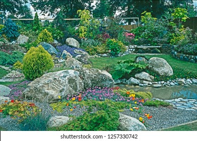 Rockery And Water Garden With Mixed Planting Of Alpine Flowers, Plants And  Shrubs.
