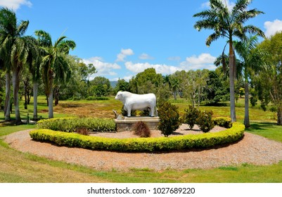 Rockhampton, Queensland, Australia - December 28, 2017. Statue of Romagnola bull at O'Shanesy Park in Allenstown district of Rockhampton, QLD