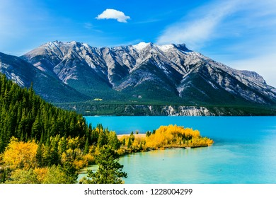 The Rockies of Canada. The emerald water of Abraham lake is surrounded by evergreen coniferous forests. Concept of active, ecological and photo tourism