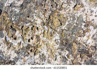 rocks background grunge texture, location - New Zealand
