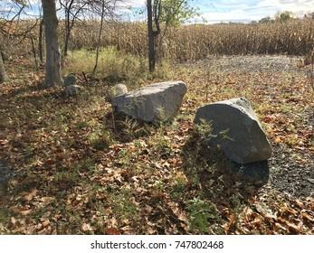 Rocks and Boulders in Michigan