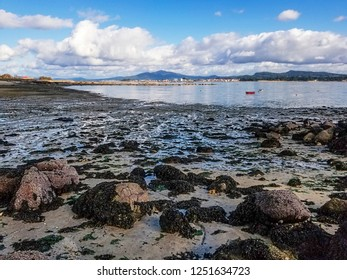 Rocks covered with algae at low tide on Riason beach, Arousa Island, at low tide