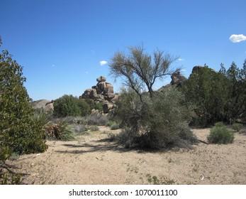 Rocks in the desert 01