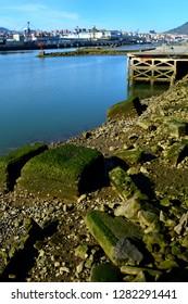 Rocks in the docks seaside landscape