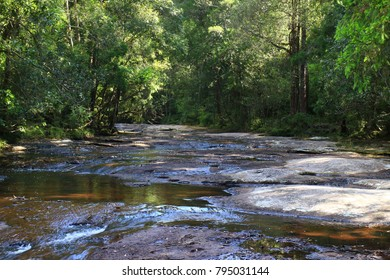 Rocks, flowing water and trees.