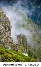 Rocks, greenery and mist. Mountain scenery after rain
