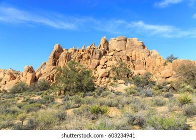 Rocks in Joshua Tree NP, California