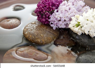 Rocks and lilac flowers in a bowl with water. Shallow DOF. Focus on purple lilacs.