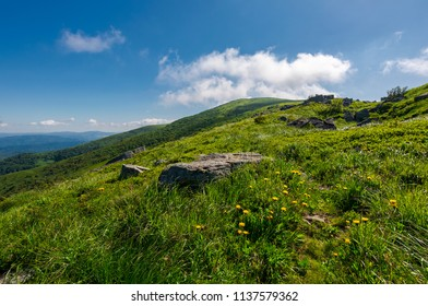 rocks on grassy hillside of the mountain. yellow dandelions along the path uphill in to the sky with fluffy clouds. beautiful summer scenery. tracking and hiking activity background