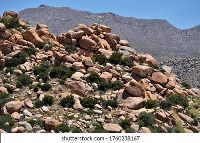 Rocks on a hillside in San Diego County, CA.