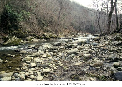 rocks on riverbed in autumn