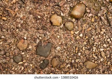 Rocks on a trail.  St. Mary's River State Park, Leonardtown, MD, USA.
