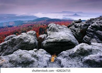 Rocks and orange forest during autumn. Sunset in czech national park Ceske Svycarsko. Misty evening autumn landscape.