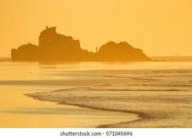 rocks silhouette on the beach in golden light
