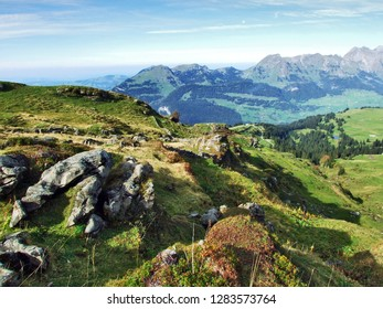 Rocks and stones from the Churfirsten mountain range  - Canton of St. Gallen, Switzerland