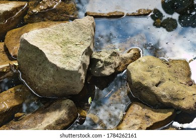 Rocks and stones in stagnant water