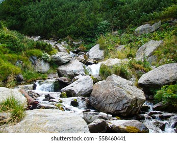 Rocks in stream with smooth flowing water   - Shutterstock ID 558460441