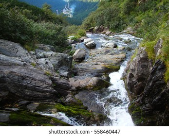 Rocks in stream with smooth flowing water  - Shutterstock ID 558460447