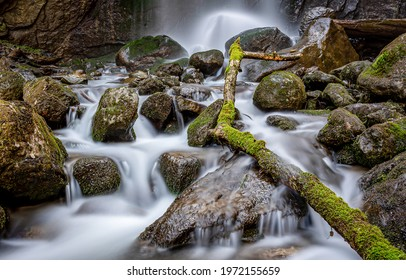 Rocks and tree branches in the waterfall. River creek waterfall flow. Waterfall creek rocks in moss