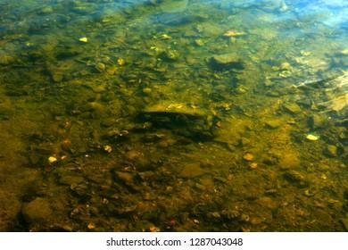 Rocks underwater with clean water II