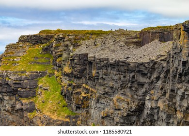 Rocks and vegetation in Cliffs of Moher, Doolin, Clare, Ireland