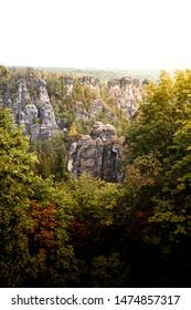 Rocks vertical in Forest beautiful weather Sächsische Schweiz Bastei