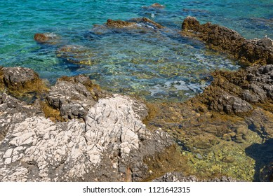 Rocky beach, bue transperent sea in Istria, Croatian coast