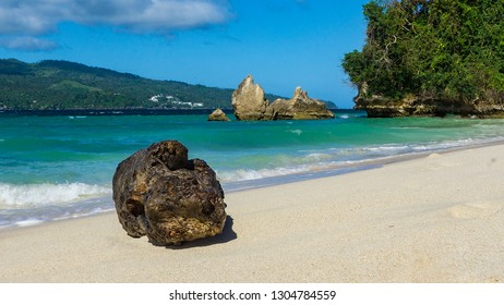 A rocky beach in the Caribbean on Bacardi Island, Cayo Levantado with waves and palm trees in the Atlantic, north of the equator