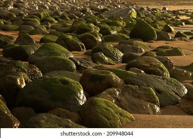 Rocky beach in the setting sun