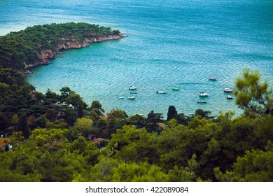 Rocky cape with forest of one of the Prince Islands. Turkey