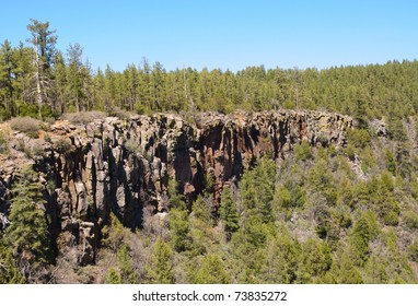rocky cliff in a forest